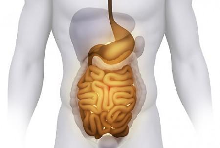 Симптомы заброса желчи в пищевод