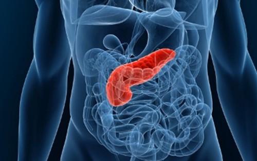 Нарушение работы поджелудочной железы симптомы