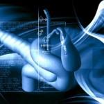 Прогноз рака желчного пузыря