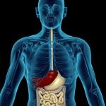 Пищевод Барретта: диета