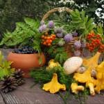 Хронический холецистит: лечение народными средствами