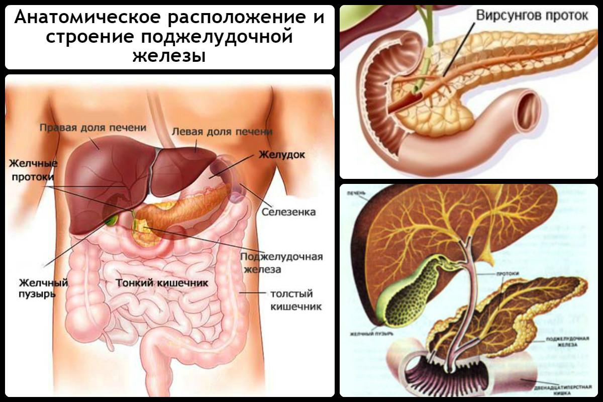 лечение от паразитов таблетками