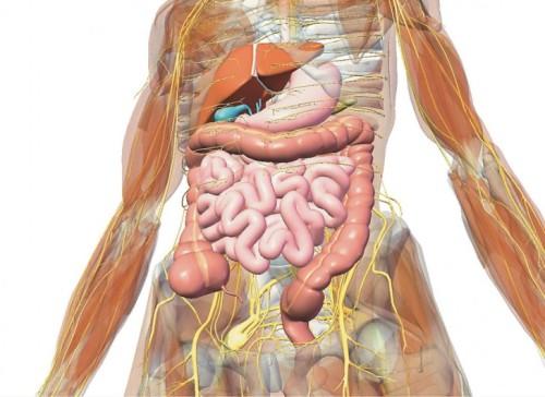 Хронический гастродуоденит симптомы и лечение