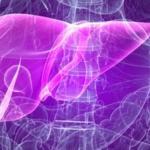Аутоиммунный гепатит: симптомы